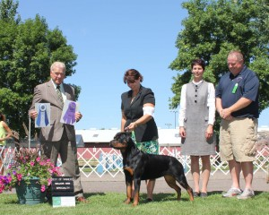 Takoda's specialty win with handler Holly Eldred