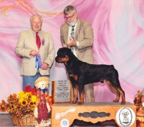 Rottweiler, Hoss, earns Best of Winners at the Sioux Empire Kennel Club Show